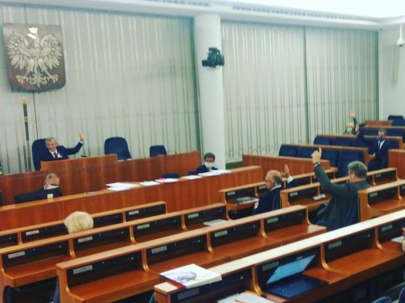 komisje senackie